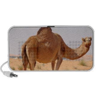 Camel for Arabs Speakers