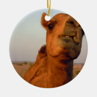 Camel in desert 2 christmas ornament