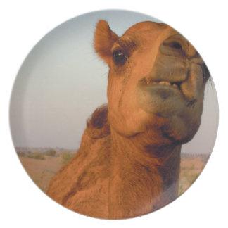 Camel in desert 2 plate