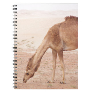 Camel in desert notebook
