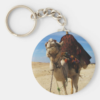 Camel in Egypt photograph Key Ring