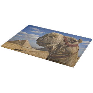 Camel in front of the pyramids of Giza, Egypt, Cutting Board