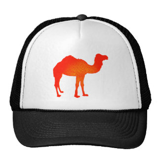 Camel in Red Cap