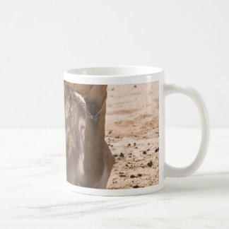 Camel in the Shade Coffee Mugs