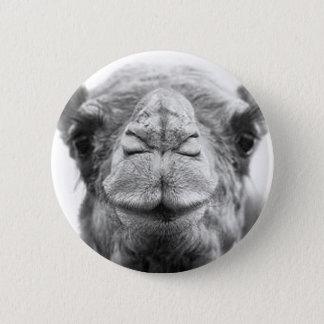Camel Kisses Fun Closeup Photo 6 Cm Round Badge