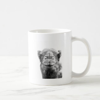 Camel Kisses Fun Closeup Photo Basic White Mug