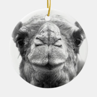 Camel Kisses Fun Closeup Photo Christmas Ornament