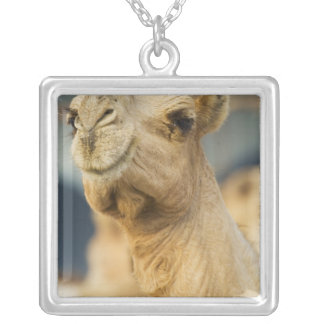 Camel Market near Cairo, Egypt Silver Plated Necklace