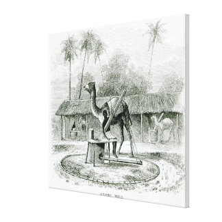 Camel Mill, from 'Travels in Africa' Canvas Print