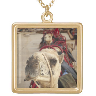 Camel on Cable Beach, Broome Gold Plated Necklace