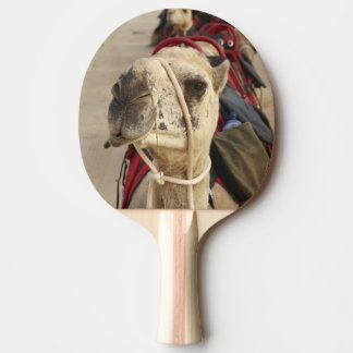 Camel on Cable Beach, Broome Ping Pong Paddle