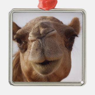 Camel Ornament