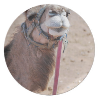 Camel Party Plate