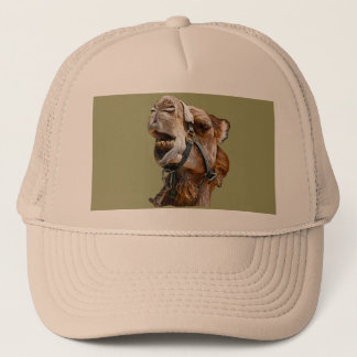 Camel Picture Hat