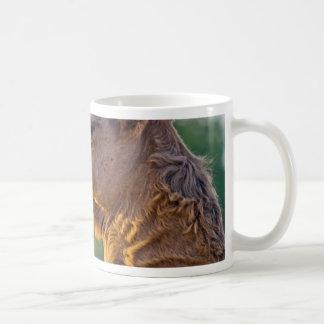 Camel Portrait Basic White Mug