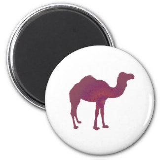 Camel Prestige Magnet
