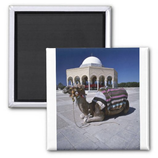 Camel resting in front of dome, Monastir, Tunisia Magnets