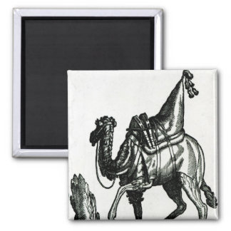 Camel Square Magnet