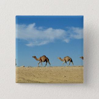 Camel train 15 cm square badge