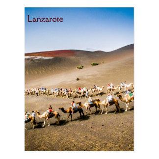 Camel Train in Lanzarote Post Cards
