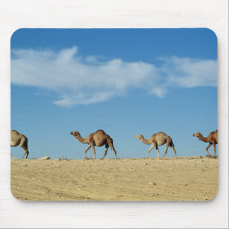 Camel train mouse pad