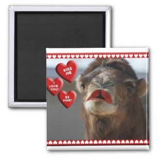 CAMEL VALENTINE - WEARING LIPSTICK - KISS ME! SQUARE MAGNET