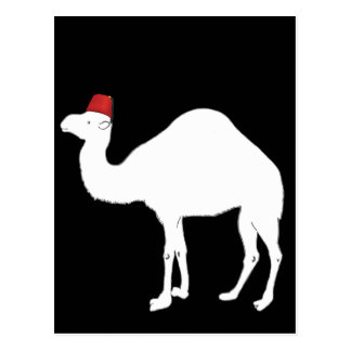 Camel Wearing A Fez Postcard