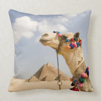 Camel with Pyramids Giza, Egypt Cushion