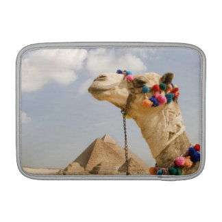 Camel with Pyramids Giza, Egypt MacBook Sleeve