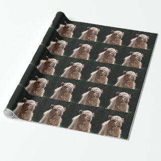 Camel Wrapping Paper