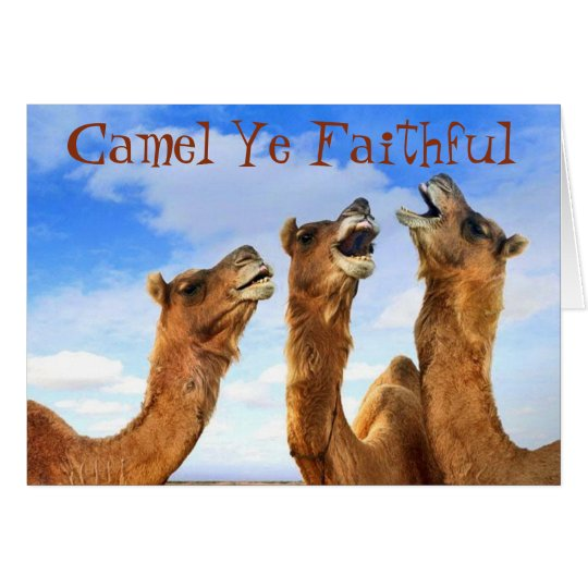 """""""CAMEL YE FAITHFUL"""" SINGS THE CAMELS AT CHRISTMAS"""
