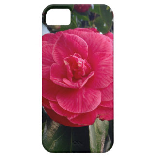 Camelia iPhone 5 Cover