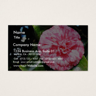Camellia Business Card