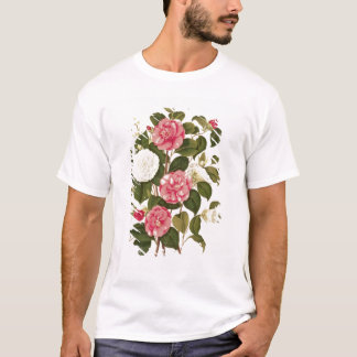 "Camellia  from ""A Monograph on the Genus' T-Shirt"