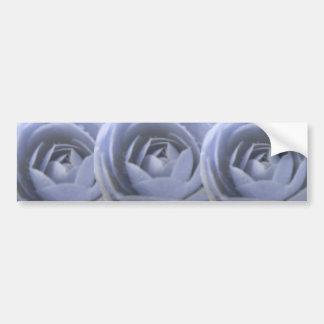 Camellia Frozen Beauty Bumper Sticker