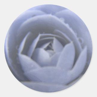 Camellia Frozen Beauty Sticker