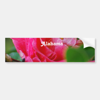 Camellia in Alabama Bumper Sticker