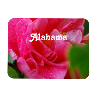 Camellia in Alabama Rectangular Photo Magnet
