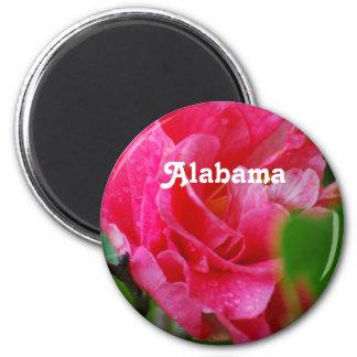 Camellia in Alabama 2 Inch Round Magnet