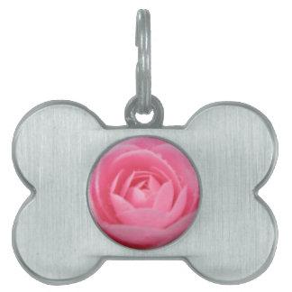Camellia Pink Pet Tag