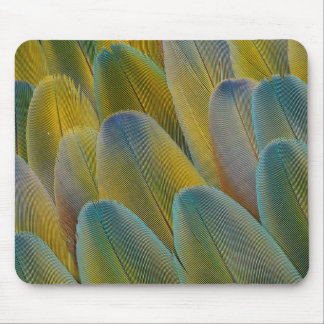 Camelot Macaw Feather Abstract Mouse Mat