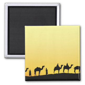 Camels and camel driver silhouetted at sunset, 3 magnet