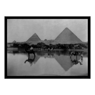 Camels and Pyramids in Egypt 1899 Poster