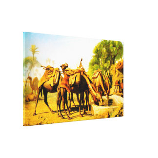 Camels drinking at an oasis stretched canvas print