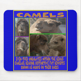 CAMELS - even-toed ungulates Mousepads