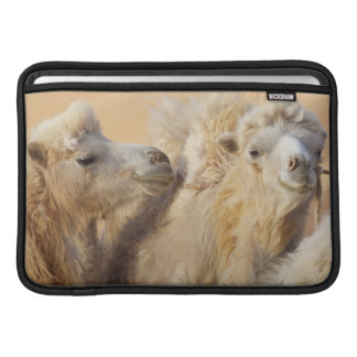 Camels in a desert convoy sleeve for MacBook air