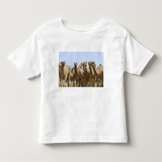 Camels in the desert, Pushkar, Rajasthan, India Toddler T-Shirt
