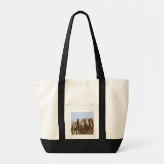 Camels in the desert, Pushkar, Rajasthan, India Tote Bag