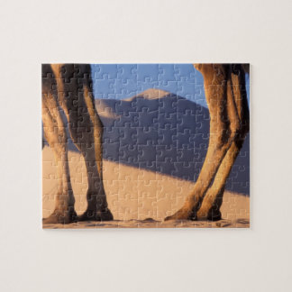 Camel's legs with sand dunes, Dunhuang, Gansu Jigsaw Puzzle