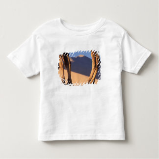 Camel's legs with sand dunes, Dunhuang, Gansu Toddler T-Shirt